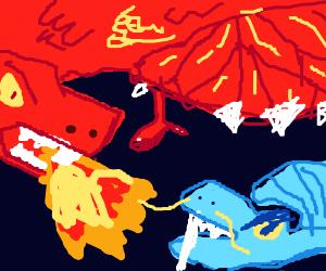 Dragon vs Dragon