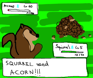 squirrel uses iacorn