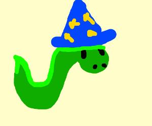 Wizard snake