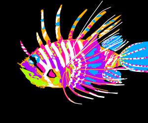 Colorful lion fish