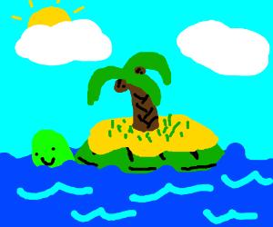 Turtle is secretly an island
