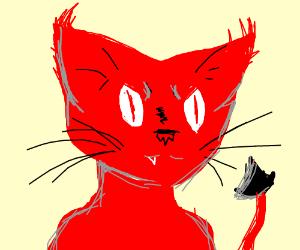 Red devil-cat
