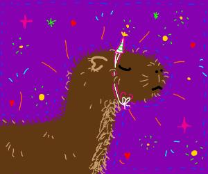Magical capybara