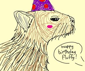 Capybara wearing a birthday hat