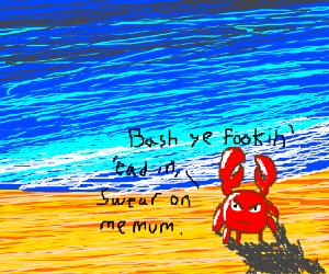 """U wanna fite m8"" -Crab"