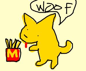 Honey dog loves fries