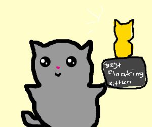 Grey kitty wins best floating kitty trophy