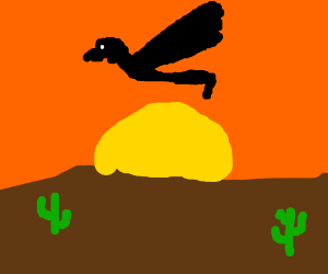 Pigeon Man flies into the sunset
