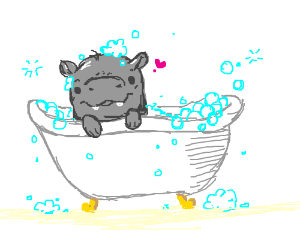 Baby hippopotamus in bathtub