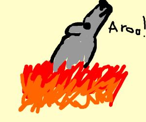 wolf/fox burning in fire