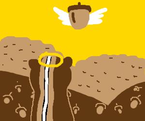chipmunk heaven