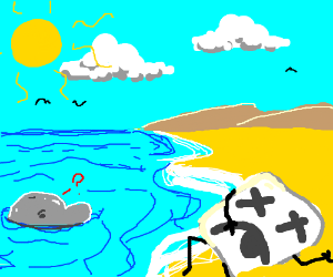 dolphin finds beached marshmallow man