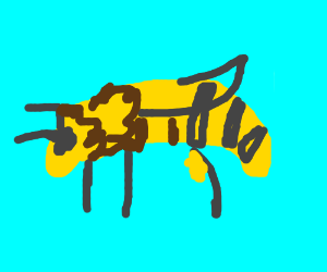 A lovely bee