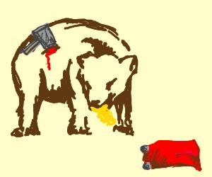 Bear eat Thor