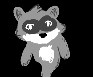 Spirit Raccoon