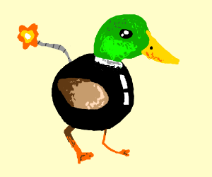 Duckbomb
