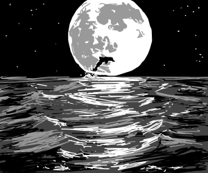 dolphin silhouetted against the moon