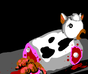 cow gets butchered alive
