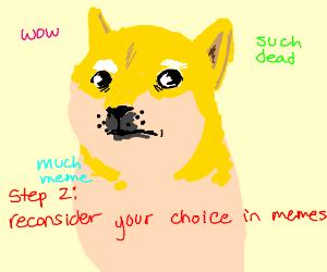step 1: doge