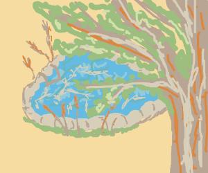 Serene poolside