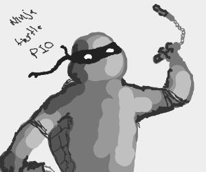 ninja turtle PIA