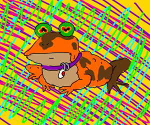 ALL GLORY TO THE HYPNOTOAD!!!!!!!!!!!