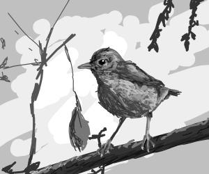 A Pretty Bird