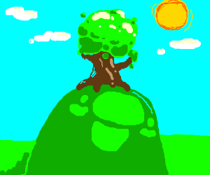Tree in a field on a sunny day