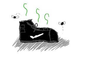 stinky nike shoe