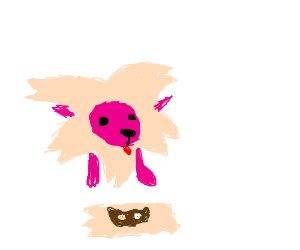 Lion from SU with a cookiecat