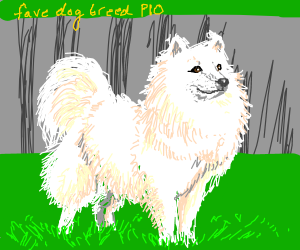 Favorite breed of dog PIO (Pass it on)