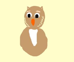 magic owl man