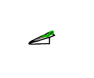 Snake on a paper airplane