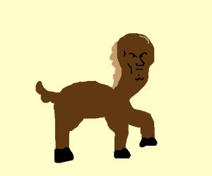Horse?