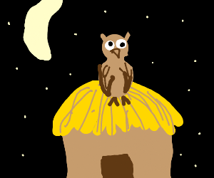Owl on a hut at night
