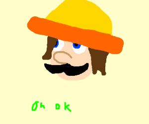 Mexican Luigi