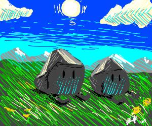 Rocks sitting in the grass