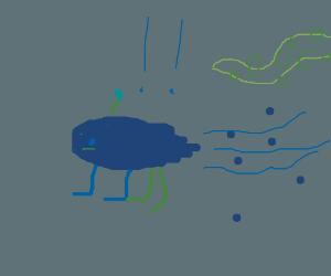 A pond runs away