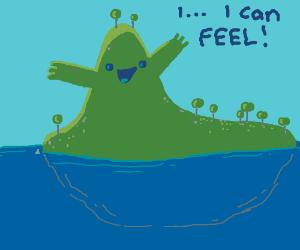 the island mountain can feel
