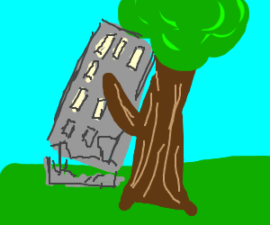 Tree uproots building