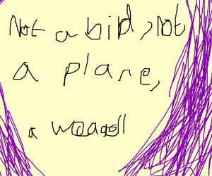 Not a bird, not a plane, A Weagell