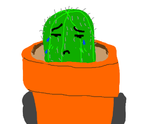 Cactus Crying