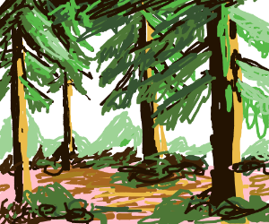 Pine/spruce forest, brown and pink dirt under
