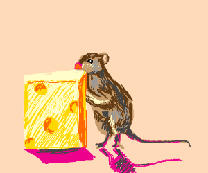 A cheese eating a mouse