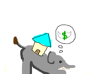An elephant bought the wrong house.