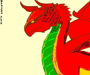 Obligatory Dragon Game Pio