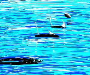 Rock skipping across a lake