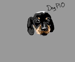 dog just got put down. draw a dog please, pio