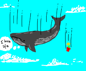 Whale in space - Drawception