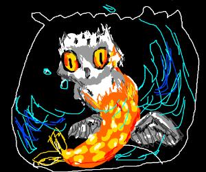 owl goldfish